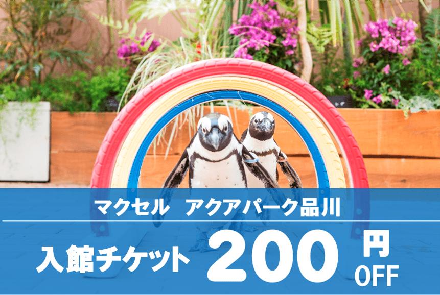 【割引チケット・夏休み特集】アクアパーク品川