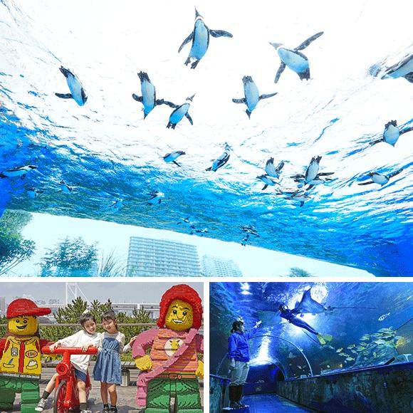 東京のおでかけスポットまとめ_サンシャイン水族館・レゴランド・ディスカバリー・センター東京・しながわ水族館